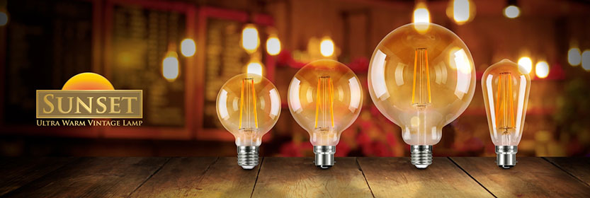 Vintage Look LED Bulbs
